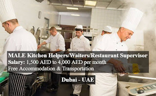 Kitchen Helper and Cleaner Urgently Required for a South Indian Restaurant in Abu Dhabi