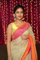 Anu Emanuel Looks Super Cute in Saree ~  Exclusive Pics 048.JPG