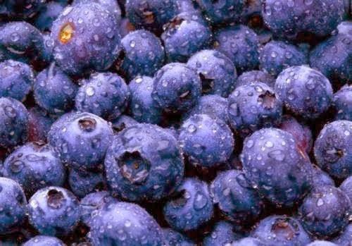 Μύρτιλλα: Στη μάχη των ρυτίδων, του καρκίνου, του διαβήτη και για γερό μυαλό!