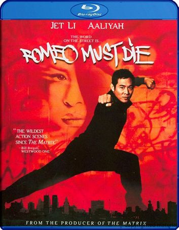 Romeo Must Die 2000 BluRay 300MB Dual Audio In Hindi 480p
