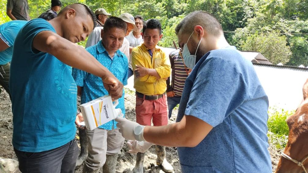 La jornada de atención veterinaria también llegó a Río Mistrató