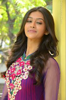 Actress Pooja Jhaveri Latest Stills in Purple Salwar Kameezt at Dwaraka Success Meet  0007.JPG