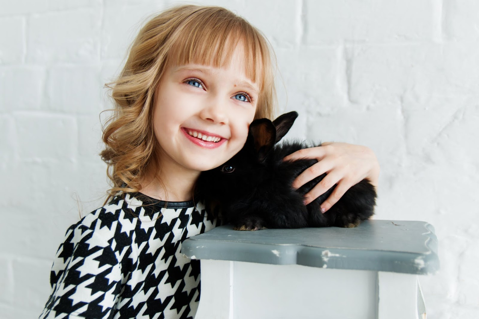 Basic Information About cats for children
