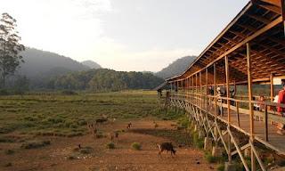 tempat penangkaran rusa di ranca upas
