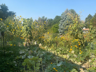 Urban Farm Overview