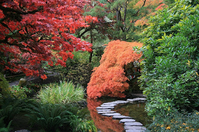 El camino del jardín debe ser atractivo, una invitación a transitar por él