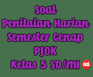 PENILAIAN HARIAN PJOK SEMESTER GENAP KELAS 5 SD/MI (BAB 8 DAN 9)