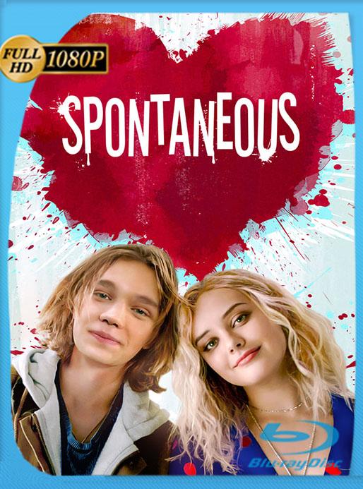 Spontaneous (2020) HD 1080p Latino [GoogleDrive] [tomyly]