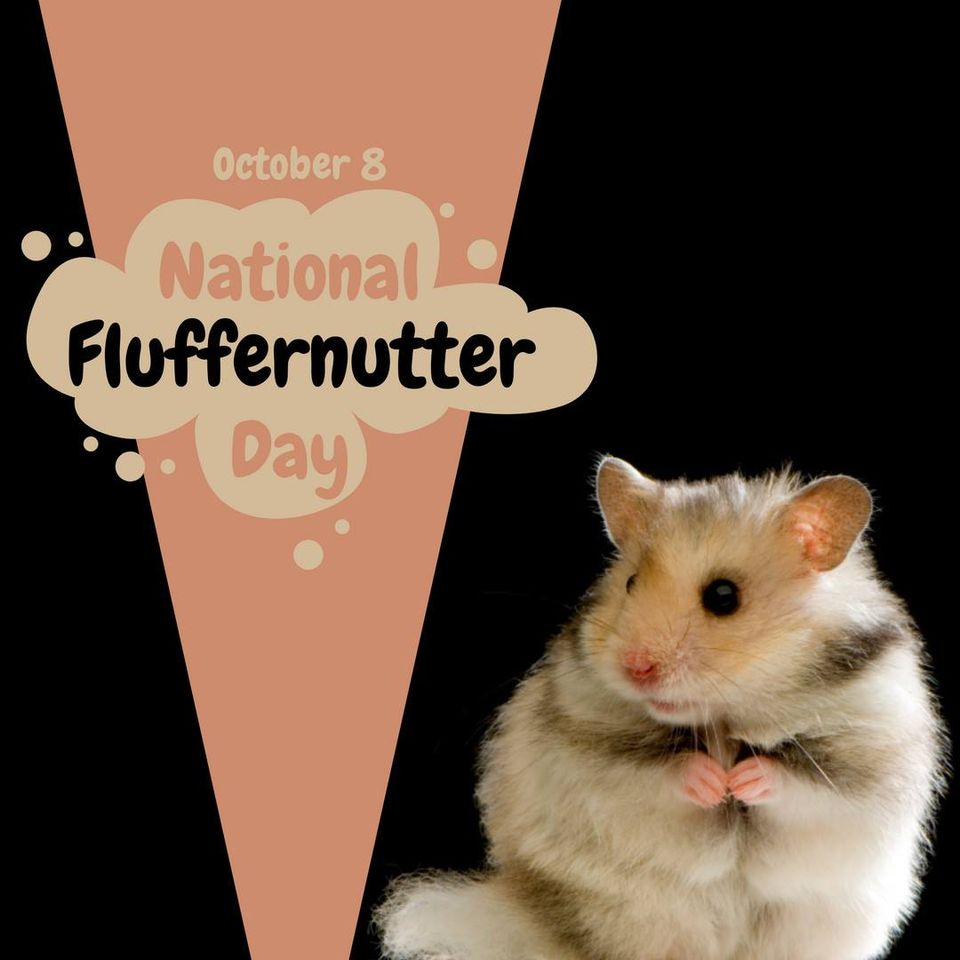 National Fluffernutter Day Wishes Sweet Images