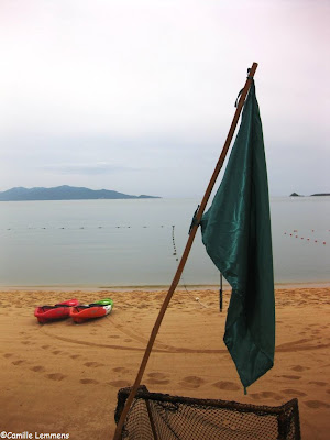 Green flags on Samui beaches