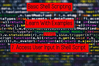 bash shell scripting with user input read command