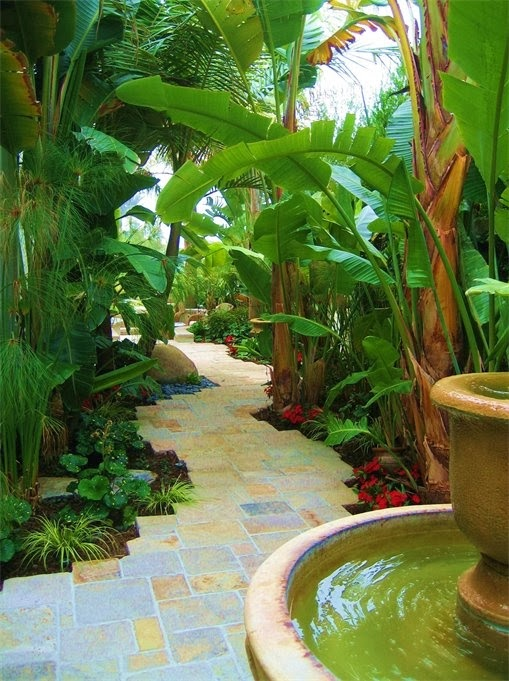 dirtbin designs: Tropical gardens i love on Tropical Patio Ideas id=99893
