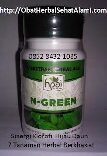 khasiat MANFAAT klorofil hijau daun SIRSAK sinergis untuk kesehatan