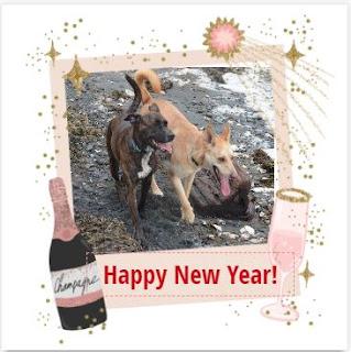 happy new year from wmtc
