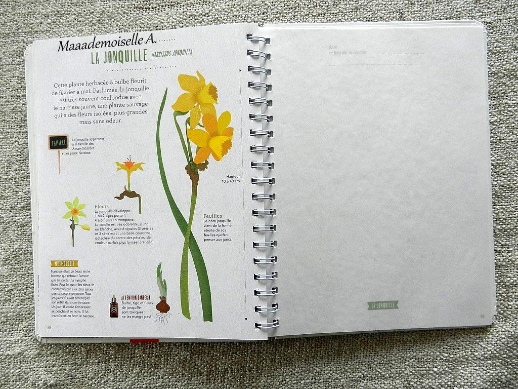 maaademoiselle a.: || mon herbier des fleurs (présentation & avis