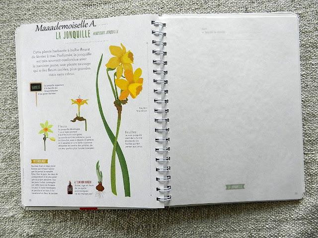 || Mon herbier des fleurs (Présentation & Avis)(Chut, les enfants lisent # 74)