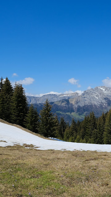Mountains, Valley, Forest, Snow, Landscape
