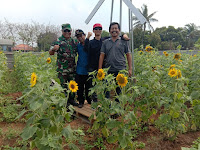 Melepas Penat Diterpa Semilir Angin Wisata Agro Taman Bunga Matahari (TBM)