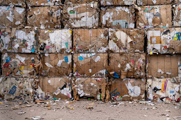 The Impact of Poorly Managed Municipal Waste