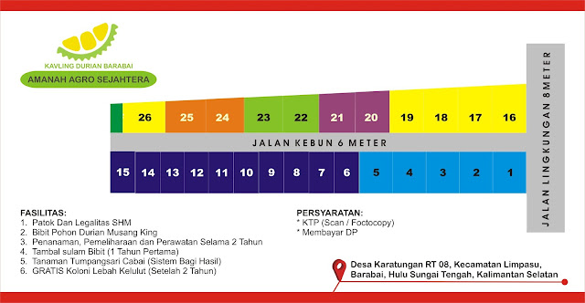 Siteplan Kavling Durian Musang King Barabai