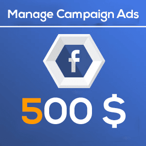 500 Manage Facebook Campaign Ads