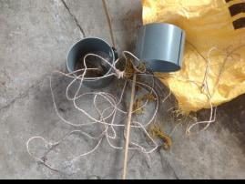 cat trap - ban cat meat trade Vietnam