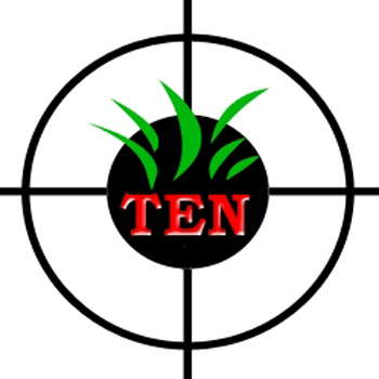 LOGO PLUS TEN