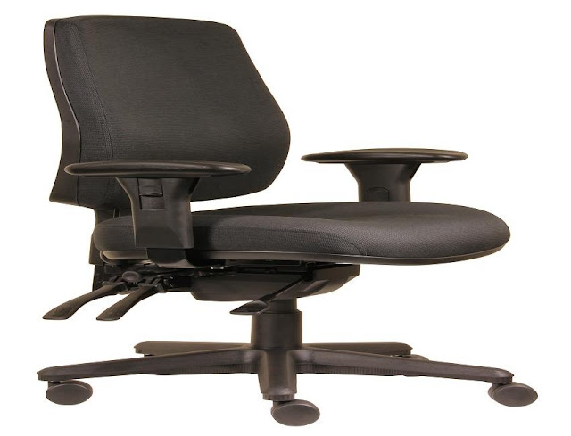best buying ergonomic office chair low back pain for sale