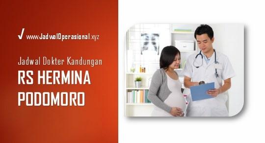 Jadwal Dokter Kandungan RS Hermina Podomoro Sunter
