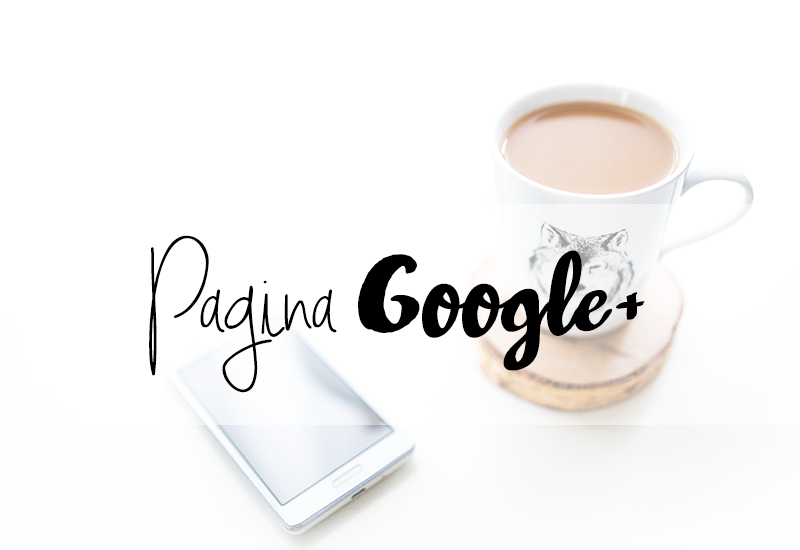 Pagina Google+ My Lovely Hook