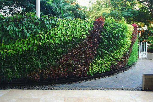 Mal Central Park Green Wall