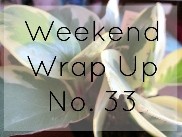Weekend Wrap Up No. 33 from Courtney's Little Things