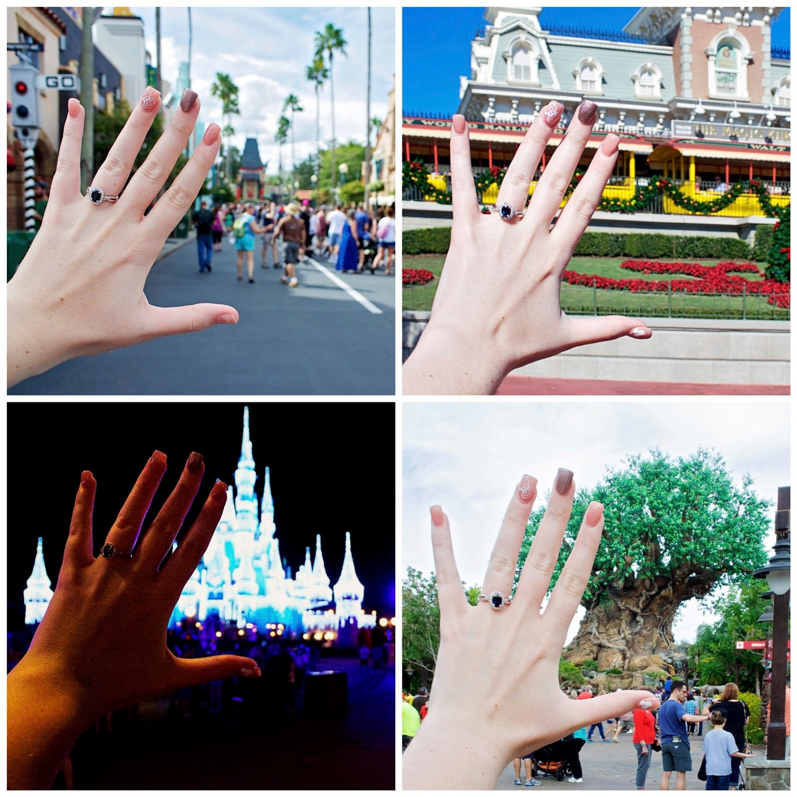 Engagement Ring Photo in Hollywood Studios, Magic Kingdom and Animal Kingdom