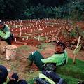 Kisah Penggali Kubur di Tengah Melonjaknya Pemakaman Covid-19 di Jakarta