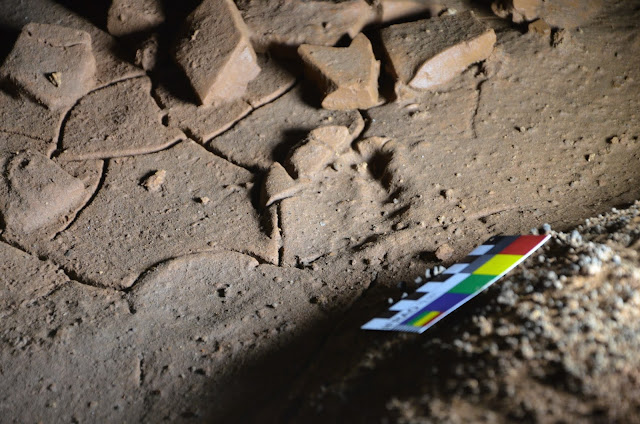 Traces of 14 Palaeolithic children's footprints found in Spain's La Garma Cave
