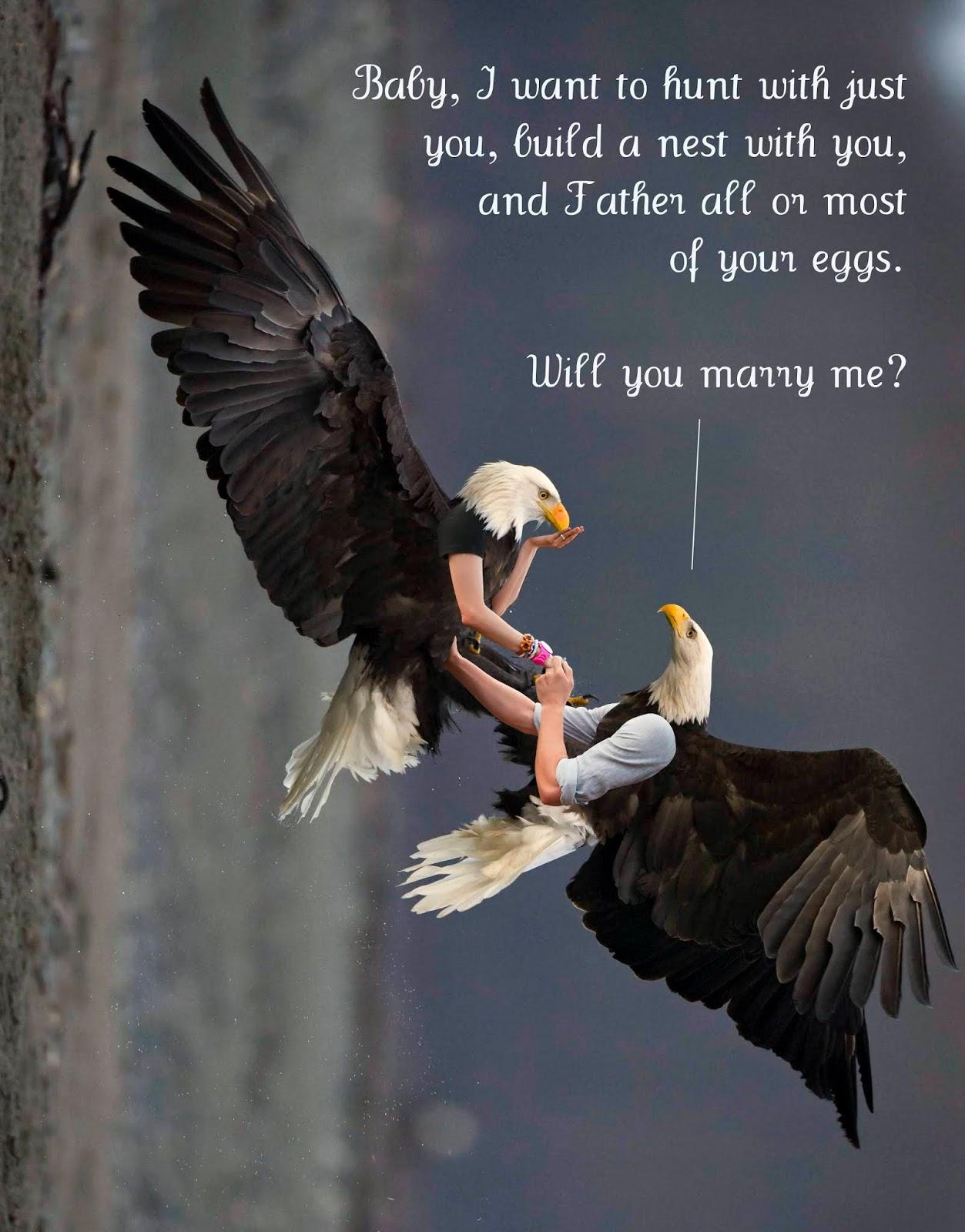 Μεγάλο πουλί σκατά λίπος κώλο