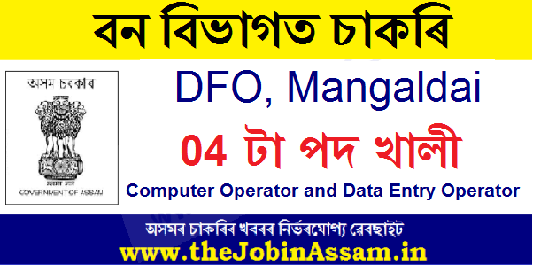 DFO, Mangaldai Recruitment 2020: Apply For 04 Computer Operator & Data Entry Operator Posts