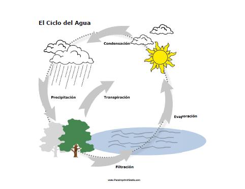 Dibujos Del Ciclo Del Agua Para Imprimir Dibujos Para Niños