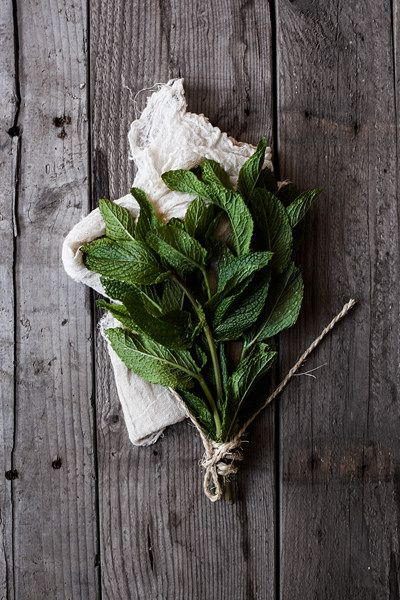 Mint Photo by onegirlinthekitchen