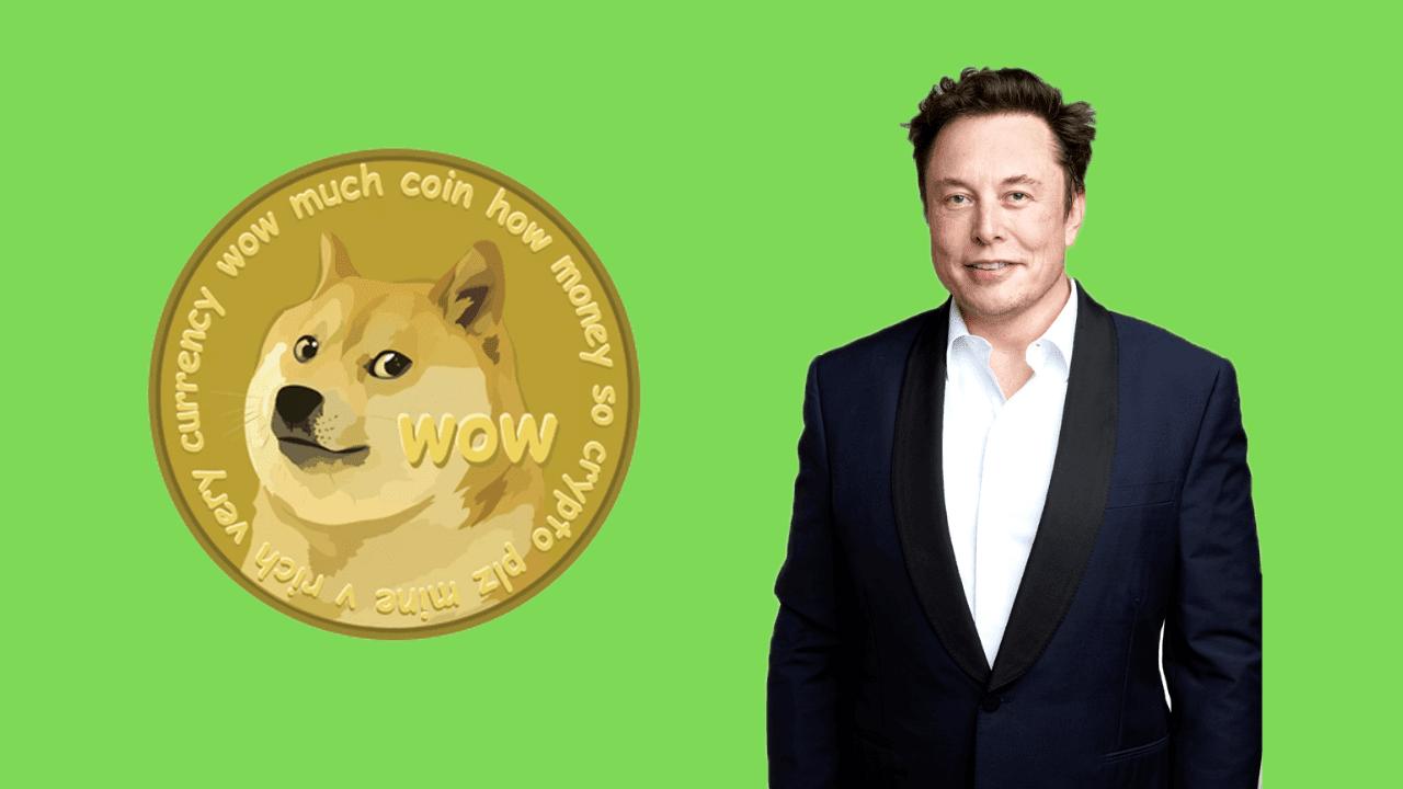 Elon Musk dogecoin criptomonedas
