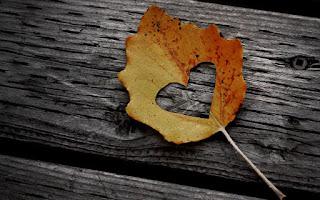 heart-shape-leaf-cut-wooden-background-image.jpg