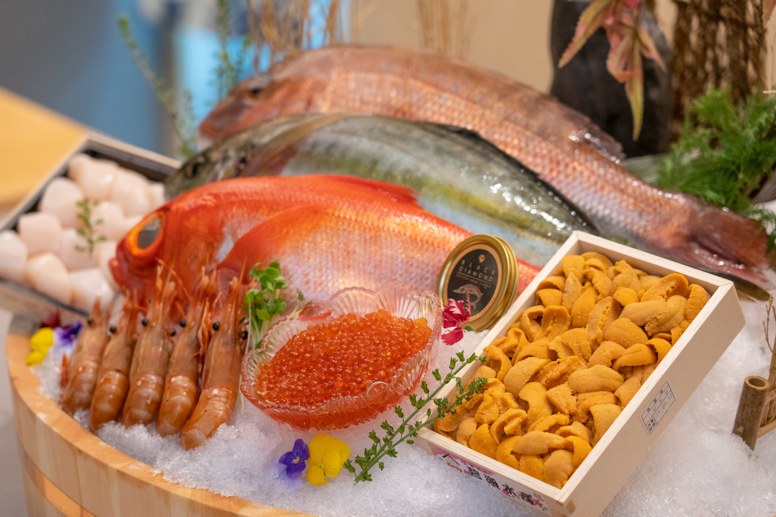 juugatsu ten, sri petaling: a premium omakase experience, in the restaurant or at home