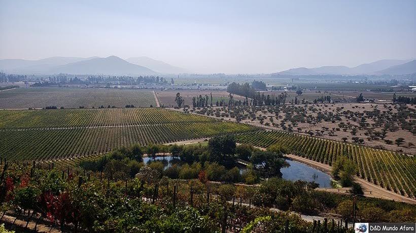 Valle Casablanca visto da vinícola Indomita: Vinícolas chilenas