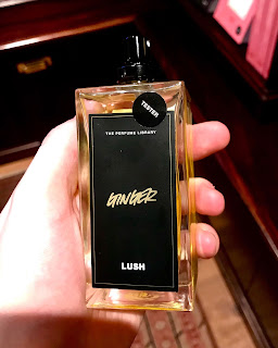 A rectangular glass bottle with clear liquid inside with a rectangular black label with Ginger in gold font on a bright background