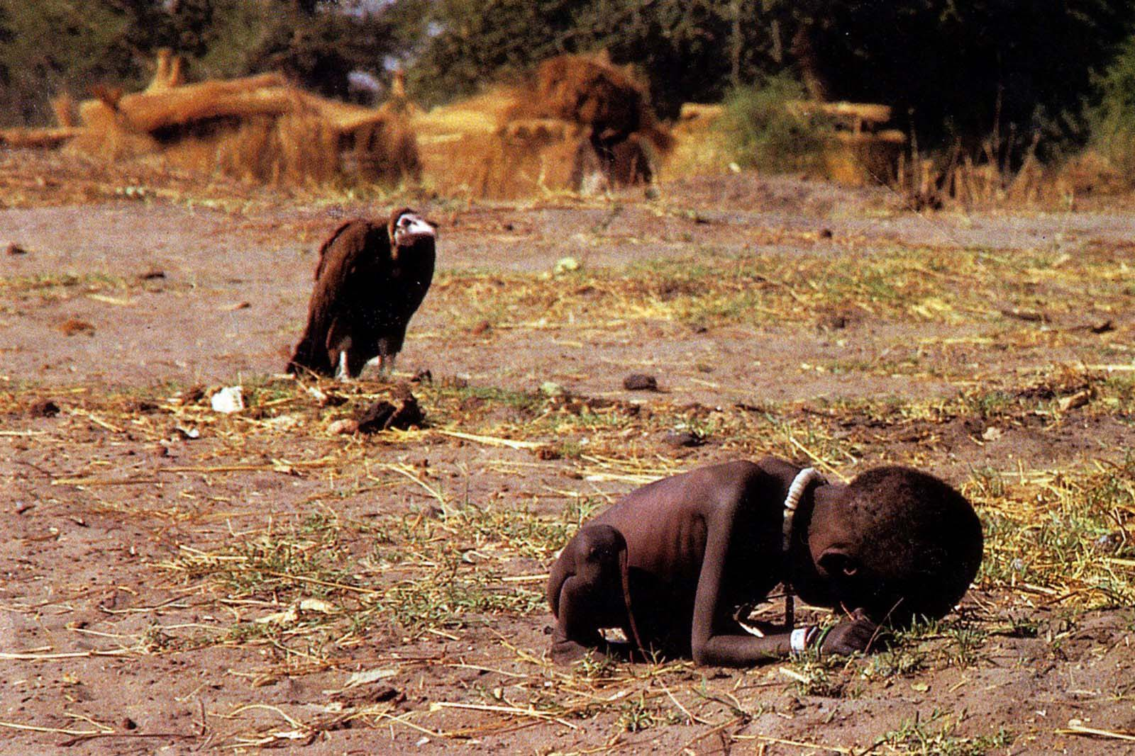 The vulture and the little girl, 1993. Original title: Struggling Girl.