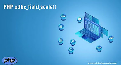PHP odbc_field_scale() Function