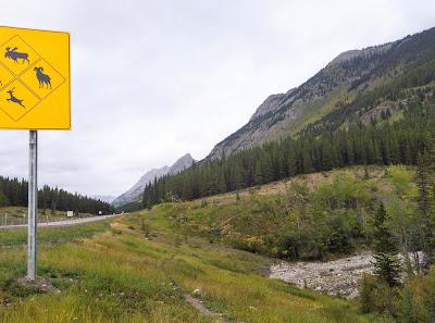 King Creek Ridge Trailhead