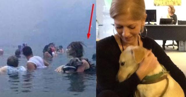 Μάτι: Η κυρία που κρατούσε αγκαλιά το σκυλάκι της μέσα στη θάλασσα, σήμερα. «Η αγάπη σώζει»