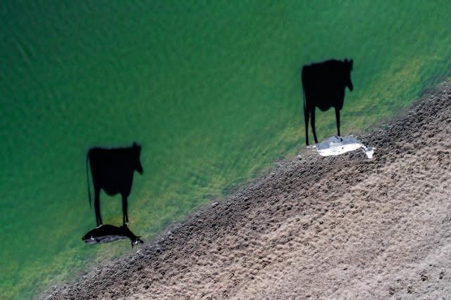 Las-mejores-fotos-tomadas-desde-un-drone-Por-LukeMaximoBell