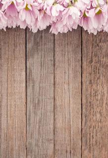 Wallpaper whatsapp pemandangan bunga keren